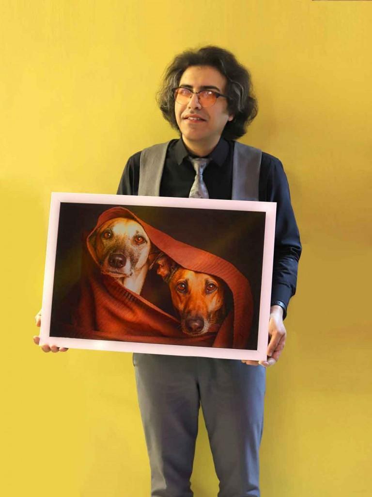 عکاسی حیوانات خانگی آتلیه حیوانات عکاسی سگ سهراب نعیمی